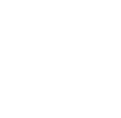 Logo Waschsalon records